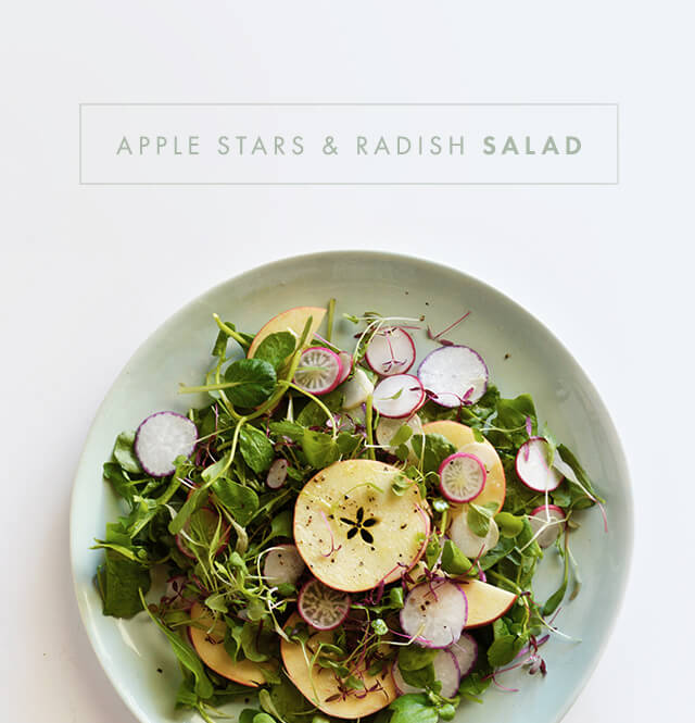 2014-05-02-applesalad-blog
