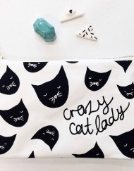 catlady-local3