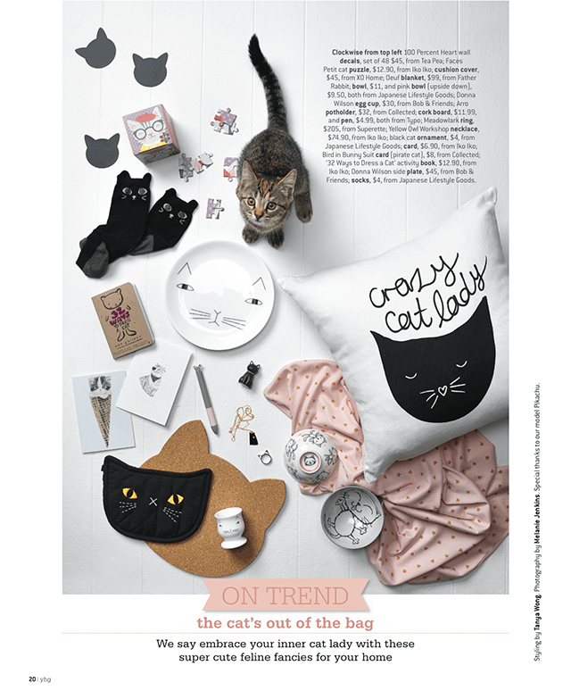 YHG-On-Trend-June-2015-(Crazy-Cat-Lady)