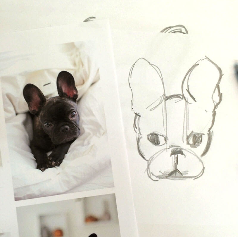 french-bulldog-pattern3