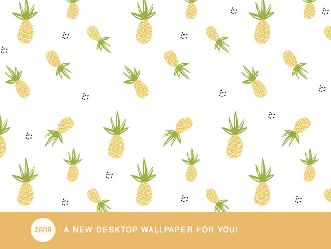 wall-in1